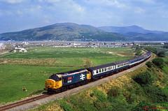 """37431 """"Sir Powys/County of Powys"""" (terry.eyres) Tags: friog 37431 sirpowyscountyofpowys"""