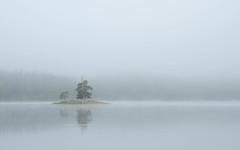Färnebofjärden (JohannesLundberg) Tags: färnebofjärdensnationalpark sweden uppland protectednature gavleborgcounty europe biology nationalpark scandinavia svealand