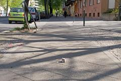 Fahrradfahren in Berlin (Miwedi) Tags: radwege berlin pflastersteine gefährlich 2011