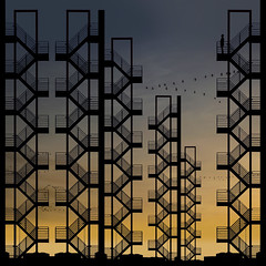 Flight of Imagination (Paul Brouns) Tags: sunset sky urban abstract art geometric lines amsterdam birds silhouette stairs square paul moving geometry fair fantasy squareformat rai graphical migrating brouns colorawardwinner iphoneography instagramapp paulbrouns paulbrounscom