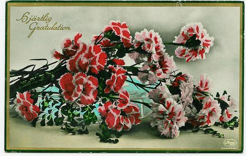 Vintage Postcard from Sweden | Carnations