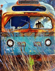 Abandoned Rusty Bus (scilit) Tags: blue orange bus green abandoned field trash rust decay alabama explore transportation vehicle picturesque decayed smorgasbord imagepoetry photographicexcellence superhearts ysplix brillianteyejewel flickrstas jediphotographer ubej