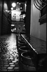 shoot the crows (chtaudt) Tags: street travel bw dublin nature 35mm blackwhite strasse irland ilfordhp5 sw rodinal praktica sligo prakticamtl5b westküste pentacon5018 2017 filmisnotdead push1600 believeinfilm analog westireland schwarzweis pentacon2928 europa europe