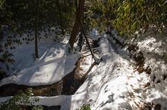 Parched Corn Creek