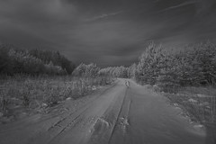 Winter Road (Alice Deе) Tags: infrared 950nm winter sunnyday trees road bw zomei january nowhere snow ir monochrome