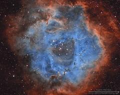 NGC2237 Rosette Nebula in Narrowband Hubble Palette (LightVortexAstronomy) Tags: nebula rosette narrowband eeye deep space astronomy astrophotography hubble palette ngc2237 ngc2238 ngc2239 ngc2244 ngc2246