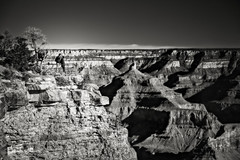 Love is in the air (b&w) (Eduard Moldoveanu Photography) Tags: america canyon desert grandcanyon lrthefader national nationalparks park sand sunrise usa american arizona beautiful blue cliff colorado colorful eroded erosion formation geologic geological grand hiking horizon kiss landmark landscape loveselfie lovers marvelous mountains nature ontheroad orange outdoor partners peak point prehistoric red river rock scenic sky states stones travel united vacation view warmth wild yavapai