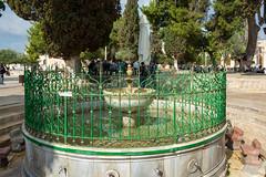 18385-Jerusalem