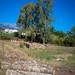 Sanctuary of Artemis Orthia, Sparti