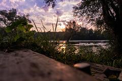 Bokeh Gegenlichtaufnahme Sonnenaufgang Aare