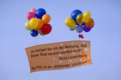 Kritik an der PDS von links (Michael Westdickenberg) Tags: rosaluxemburg pds staatskritik deutschland berlin friedrichsfelde sozialismus socialism liebknecht 1997