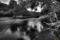 Wutach, kurz vor dem Zufluss in den Rhein - explored