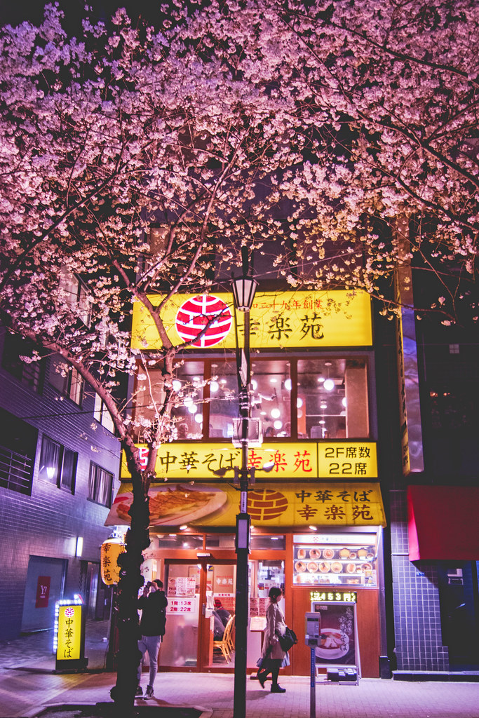 The World's Best Photos of tumblr and 東京 - Flickr Hive Mind