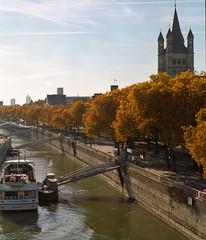 Groß St. Martin in autumn (felixmiddendorf) Tags: deutschland grosstmartin hohenzollernbrücke kodakportra400 köln mamiyarb67pros nikoncoolscan9000ed 120film