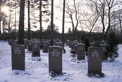 Friedhof der Sozialisten / Cemetry of the socialists (Michael Westdickenberg) Tags: zentralfriedhof einheitsgräber friedrichsfelde grabsteine friedhof graves cemeteryofthesocialists berlin deutschland germany sozialisten 1997