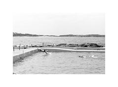 swimmers, Sydney 2015  #078 (lynnb's snaps) Tags: 2015 35mm freshwater iiic ltm leica leicaiiic bw film leicafilmphotography summicron5cmf2collapsibleltm ilfordhp5 kodakd76 rangefindercameras rangefinderphotography rangefinderforum summer beach coast ocean sydney australia ©copyrightlynnburdekinallrightsreserved