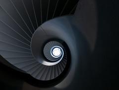 Greyscale (michael_hamburg69) Tags: braunschweig germany deutschland brunswick niedersachsen treppe stairs staircase treppenhaus wendeltreppe dankwardstrase1 shadesofgrey grautöne architecture modern architektur geometrisch linien
