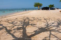 IMG_7334.jpg (Dhammika Heenpella / CWSSIP Images of Sri Lanka) Tags: මුහුද ශ්රීලංකාව matara srilanka holiday sea dhammikaheenpella ශ්රීලංකාවේෆොටෝ ධම්මිකහීන්පැල්ල travel outdoor imagesofsrilanka ශ්රීලංකාවේචායාරූප polhenabeach පොල්හේනමුහුදුවෙරළ මාතර traveldestination placesofinterest