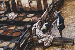 Chouara #3 -Fès (Jethro_aqualung) Tags: nikon d800e marocco fez fès tannery tanneries concerie jethroaliastullph chouara people