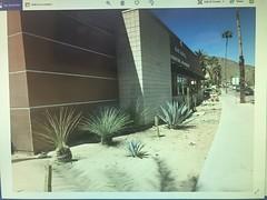 The photos won't upload- too big (f l a m i n g o) Tags: california palmsprings vacation trip walk morning march 29th 2019 friday wontuploadoriginal