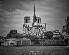 Notre-Dame de Paris (Mister Blur) Tags: notredame paris france catedral blackandwhite noireetblanc blancoynegro b bw nikon d7100 nikkor lens 55200mm snapseed rubén rodrigo fotografía noussommesparis
