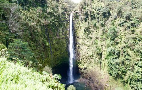 Akaka Falls, Hilo side, Big Island Hawaii DSC_0905