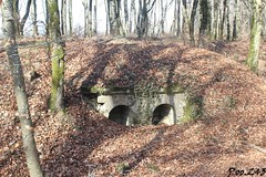 Fort de Souville (Poo.243) Tags: abords positions artillerie niches munitions fortification sere rivieres wwi premiere guerre mondiale first world war one erste erster ersten weltkrieg lorraine france grand est meuse 55 1914 1915 1916 1917 1918 14 18 artillery verdun souville fort tourelle turret battlefield champs bataille