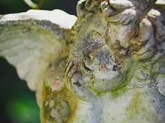 Garden Angel Bokeh |  15. April 2019 | Tarbek - Schleswig-Holstein (torstenbehrens) Tags: garden angel bokeh | 15 april 2019 tarbek schleswigholstein olympus penf 7xef50149mm f28
