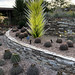 PHX Desert Botanical Garden Plastic Garden Feature IMG_2121