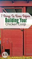 7 Things To Know Before Building A Chicken Coop (Read News) Tags: 7 things to know before building a chicken coop