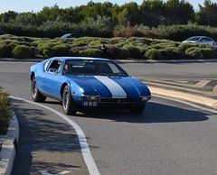 DE TOMASO Pantera - 1971 (SASSAchris) Tags: de tomaso detomaso pantera voiture italienne v8 américain ford castellet circuit ricard 10000 tours