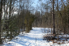 A Walk In Inverhuron