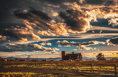 Beyond The Road (miss.interpretations) Tags: summer winter spring seasons changingseasons prairie meadows gold goldenfields barn redbarn openfields farm fence grass sunset goldenhour storm dark moody 35mm canon6dmarkii colorado danielspark rachelbrokawphotography clouds horse happy anticipation drive roadtrip hay haybale