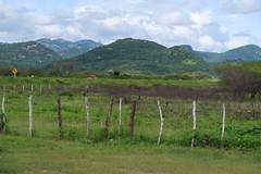Paisagem rural de Irauçuba, Ceará (Francisco Aragão) Tags: paisagemruraldeirauçuba ceará ce br222 rodoviafederalbr222 serras fotografia cores paisagemrural montanhas estadodoceará munucipiodeirauçuba irauçuba brasil brazil nordeste regiãonordeste sertão franciscoaragão canong7xmkii ceu nuvens ruralscene landscape maciçodeuruburetama noroestedoceará