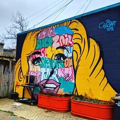 face (ekelly80) Tags: dc washingtondc spring march2019 barracksrow mural face alley streetart