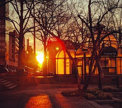 golden morning (ekelly80) Tags: dc washingtondc spring march2019 downtown golden morning glow sun sunrise light shadows bright
