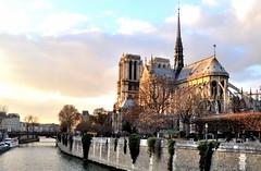 NOTRE DAME 5 (OMAR-MALO) Tags: notredame notredamedeparis parisjetaime helloparis parisonline cité parisienne loveparis parismaville before beforefire