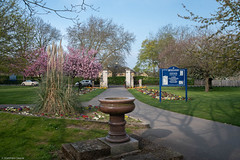 Spring at Victory Park 1 (mjsearle121) Tags: 24120mm addlestone d750 matthewsearle nikon victorypark mjsearle121