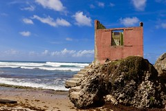 Rugged North Coast of Barbados (mikeginn12000) Tags: beach barbados ocean caribbean sky water canon palmtrees