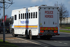 Police Horse Truck Transport (Infinity & Beyond Photography: Kev Cook) Tags: police horses truck transport pictures photos horse mover