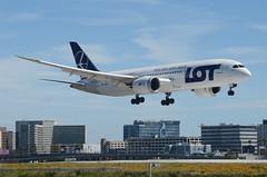 LOT 787-800 Dreamliner (SP-LRC) LAX Approach 1 (hsckcwong) Tags: lotairlines lot polishairlines 787800 7878 787 dreamliner splrc lax klax