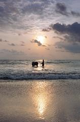 @Marina Beach, Chennai