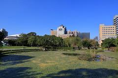 IMG_8526 (Ethene Lin) Tags: 台灣大學 醉月湖 水生植物 凝態中心 天文數學館 台大體育館 藍天