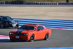 DODGE Challenger SRT8 (3ème génération) - 2008 (SASSAchris) Tags: dodge challenger srt8 srt 3ème génération 10000 tours castellet circuit ricard auto voiture américaine