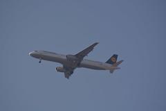 D-AIDU (陈霆, Ting Chen, Wing) Tags: lh1139 airbusa321 airbusa321231 lufthansa daidu dlh73u