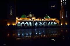 Hurghada_Moschee_Al_Mina_3_tx_DSC_0199 (said.bustany) Tags: 2019 april ägypten hurghada egypt public mosque moschee almyna nacht night moon مسجد الميناء الكبير الغردقة مصر