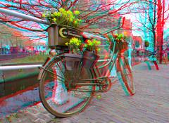 Spring in Delft 3D (wim hoppenbrouwers) Tags: spring delft 3d anaglyph stereo redcyan fiets bike gracht nieuwekerk holland bloemen emauspoort