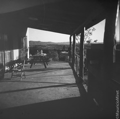 Holga-Acros-03-02.jpg (Mauricio Miret) Tags: holga acros100 ilfosol silverscan epsonv600 bw film blackandwhite