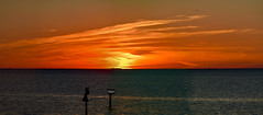 Breathtaking Fiery Sunset & Dusk Fill Tampa Bay Sky -  IMRAN™ (ImranAnwar) Tags: d850 tampabay magic blessings bay birds sooc daymark noprocessing painting dusk channelmarkers contrast miracle imrananwar lifestyle imran blessed noedit nikon water handheld gold panorama apollobeach red waterfront spring gratitude silhouette ocean seaside seagulls reflections boating ospreys sky sunset stpetersburg clouds florida god