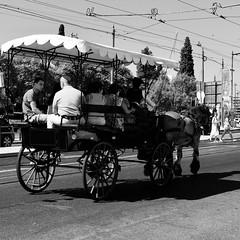 A touristic sightseeing horse-drawn cart (pedrosimoes7) Tags: tourism touristicsightseeing horsedrawncart blackandwhite blackwhite blackwhitepassionaward blackandwhiteonly horse street streetpassionaward streetimages streetlife streetshot streetlight jerónimos belem lisbon portugal